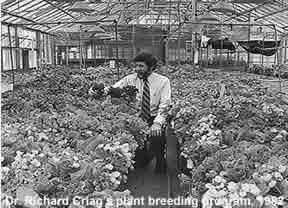 Richard Craig and the Plant Breeding Program, circa 1982