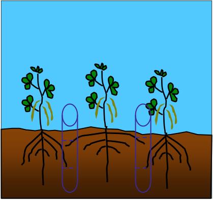 Soil Coring Theory