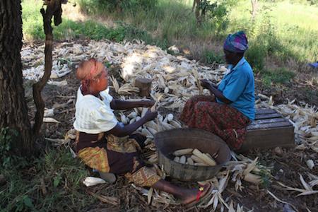 Bean recipe research in Mozambique