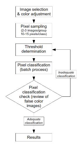 Image Analysis Workflow
