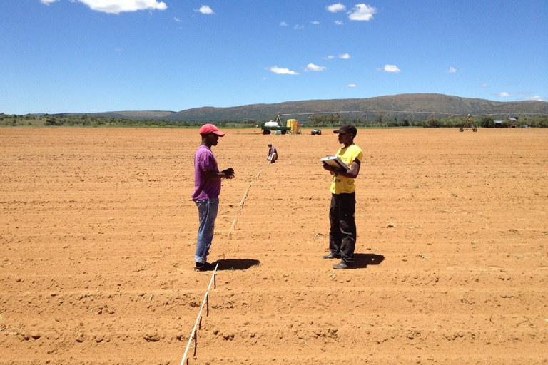 Interns (Tsitso, Dominik, and Rodney) laying out a field plot in South Africa