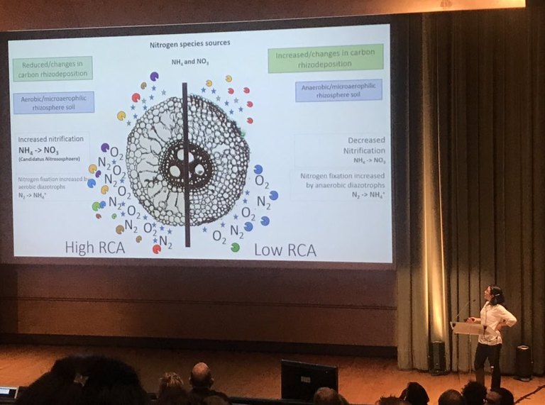 Tania Galindo-Castañeda presents work at Int'l Phytobiomes Conference