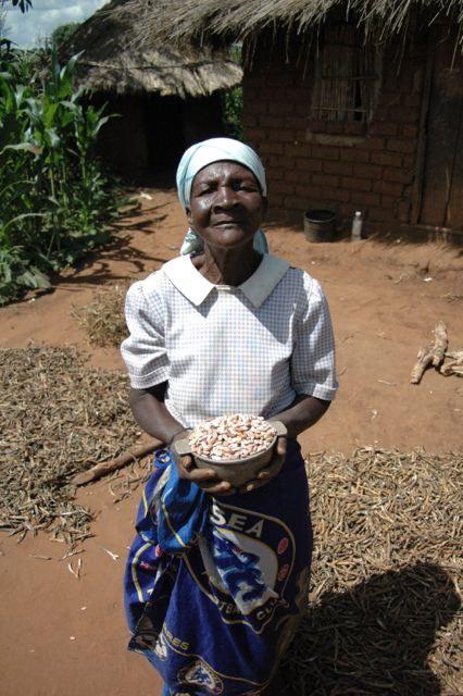 Bean farmer, Mozambique