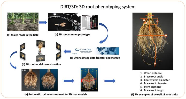 DIRT/3D system