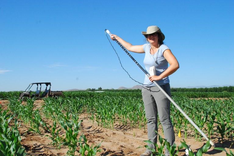 Dorien van Hees conducting field research