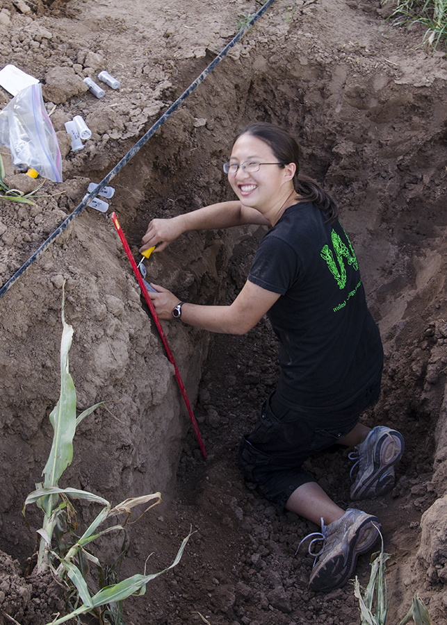 Soil evaluation