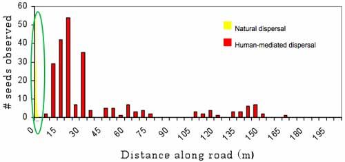 Dispersal Distance