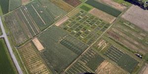 Agronomy Farm Aerial View