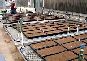 Soil Flats