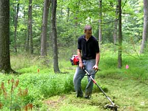 Rotary String Trimmer