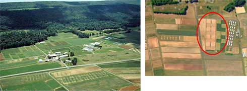 From left: Russell E. Larsen Agricultural Research Center and certified organic field plots.