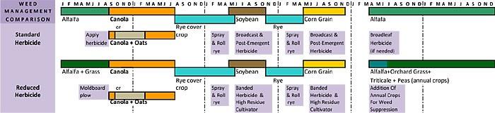 Grain Rotation Schematic